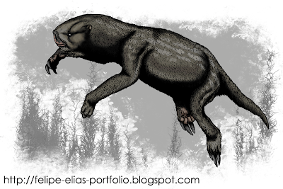Megalonychidae Ahytherium