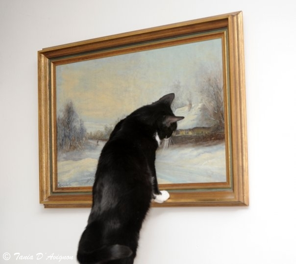 Kotyk the art Critic