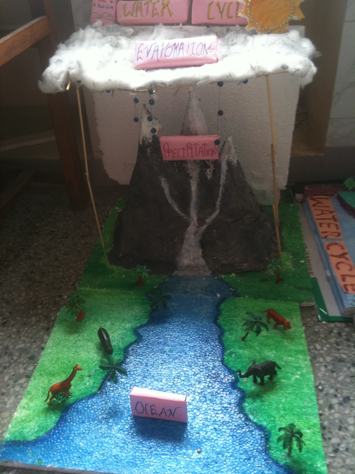 Science Model on Water Cycle