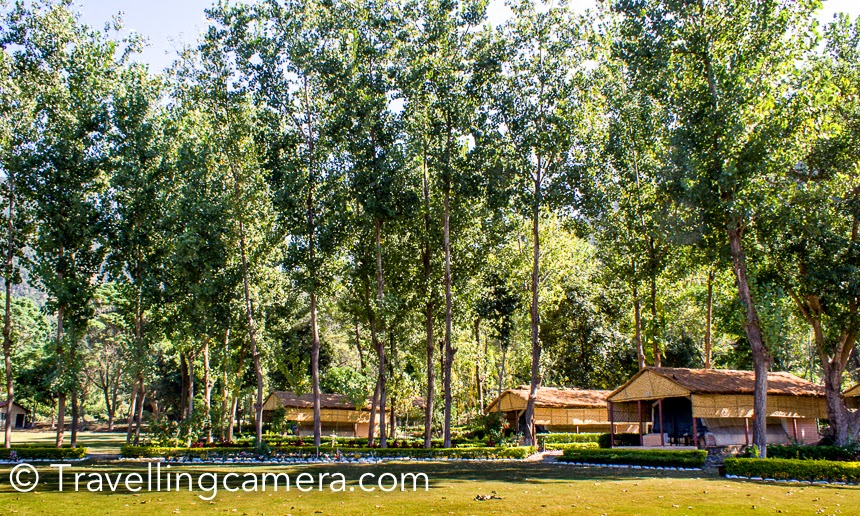 I have been to Jim Corbett 5 times, although I never saw tiger there :). During all my visits to Jim Corebett, I stayed in different resorts and today sharing some of the old photographs from my favorite place so far. This Photo Journey shares about Welcome Heritage Corbett Ramganga resort and more.It was our annual office trip and we reached this resort early in the morning after overnight journey in Volvo from Delhi. This place is located around Ramganga river. This resort has huge space surrounded by green trees, colorful birds and lot of flora & fauna. There are different sorts of cottages, rooms and suites in this resort. Nicely maintained rooms and facilities. We spent 2 days in this resort and it was an awesome experience for most of us. During these 2 days, we also planned one safari inside Jim Corbett National Park.I loved these huts in woods. This resort has huge area and some part of it is well covered with trees and varied plantations. This place is away from hustle bustle of the town. Main town is full of resorts, while this one is away from main road and no other resort or hotel around this place.The resort is located at stunning location right between valleys and ramganga river. Very peaceful and mesmerizing. It's near marchulla and even the roads leading to resort give you feeling that something is special in its location.We had a fantastic time staying at Ramganga resort. I have never had such fresh n well made food in a hotel. We used to eat like crazy, and none of us complained of any sort of gastric problems.The hotel staff was very courteous.Some of the folks in our group felt that cottages lacked a bit of privacy.Early morning time was such a pleasant experience in this resort, waking up, to the sound of water n birds chirping. Dew on the flowers make their gardenThe staff here are amazing set of people who are really helpful and not the ones who head to please only the foreign tourists.  Since we were there in a group, the package we got from the hotel was decent and didnt make us feel that they were overpriced.This place isway too far from the Corbett entrances and you need to do lot of driving to get to things. For some folks it's a drawback and for other it makes the place peaceful. During evening, they arranged bon-fire with live music by a local band. These folks were awesome. They also allow DJ during the night if requested by groups.I enjoyed walking around this place and clicked lot of colorful flowers.