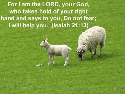 Isaiah 21:13 Bible Quote