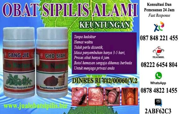 Obat Sipilis Alami