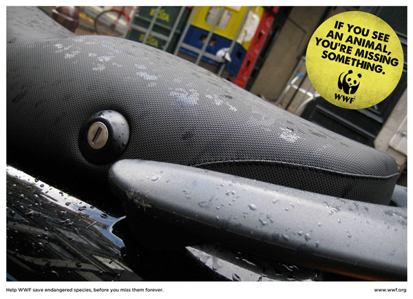 WWF+Dolphin Creating Creative Wild Life Awareness: Animals In Advertisements