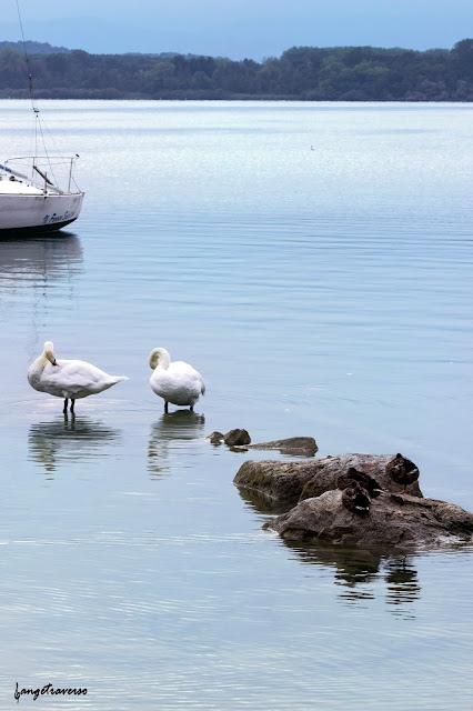 Lago di Viverone, Piemont, Italy
