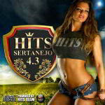 Hits Sertanejo 4.3 2012