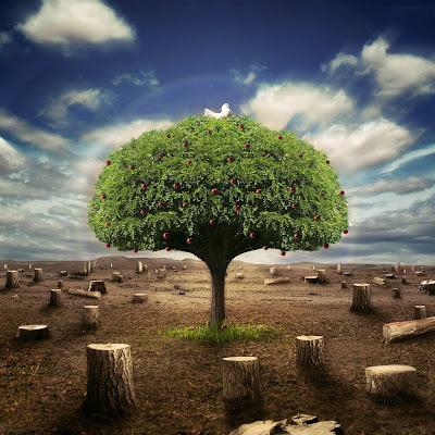 Tree ipad