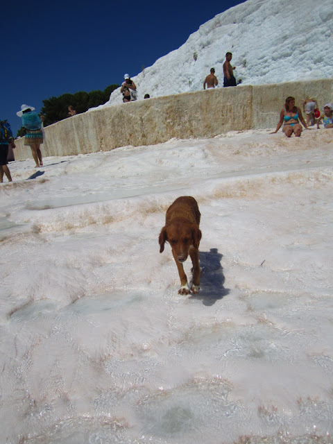 Travertines in Pamukkale, Turkey.