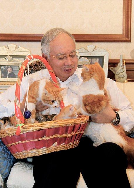 Pertama Kali Tengok PM Berbaju Rasmi Sukan Malaysia Dengan Kucing