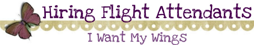 Hiring Flight Attendant Interview - I Want my Wings