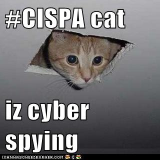 CISPA cat iz cyber spying