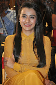 Trisha photos at Cheekati Rajyam event-thumbnail-19