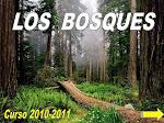 Proyecto LOS BOSQUES