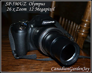 My Olympus SP-590UZ