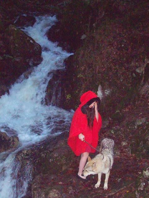 Лес,  волки  и  красная  шапочка-  путешествие  в  сказку