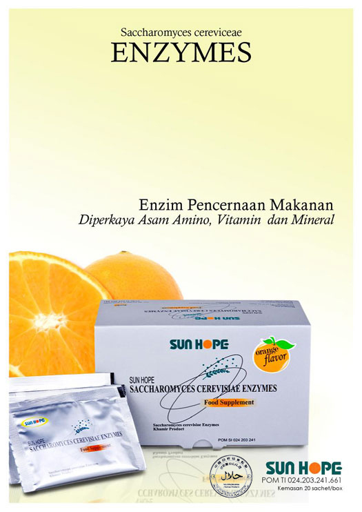 SUN HOPE ENZYMES