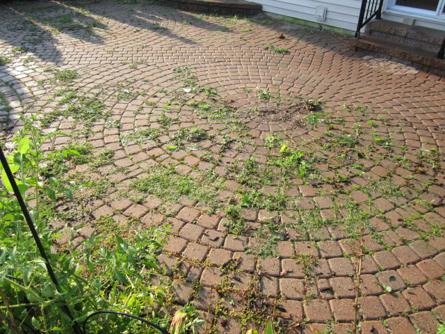 Cleaning, Sanding, And Sealing Performed On Neglected Paver Patio