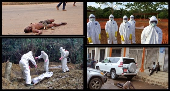 Число жертв вируса Эбола достигло 4033 человек