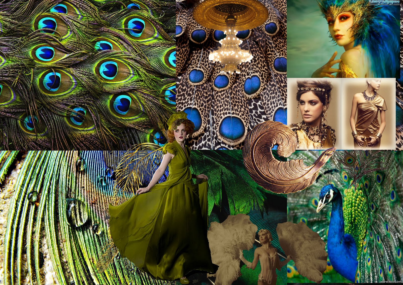 Pearl Bespoke Peacock And Gold Mood Board For Lingerie Theme