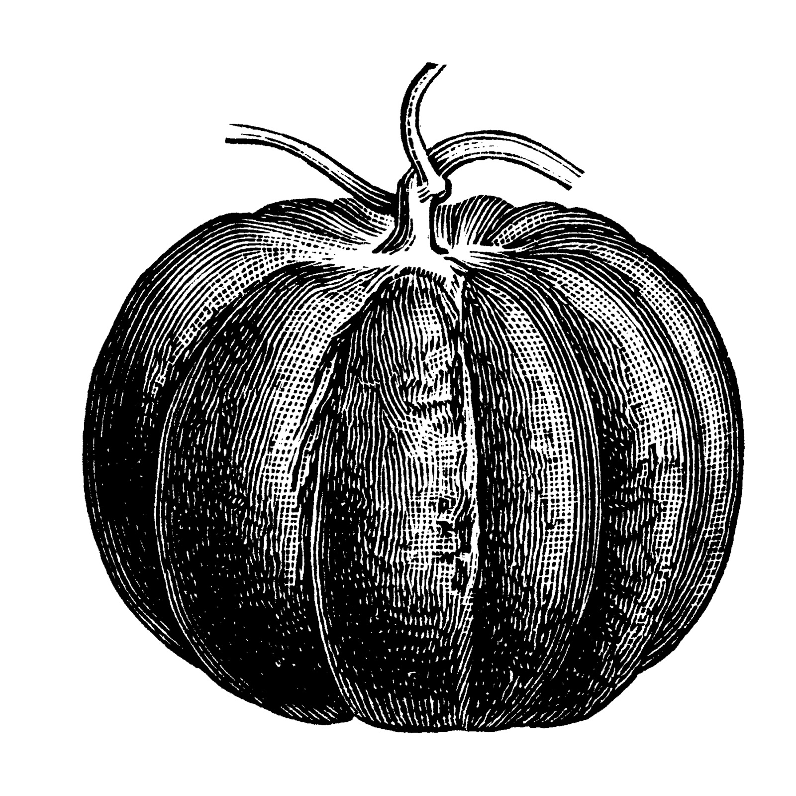 vintage pumpkin clip art - photo #2