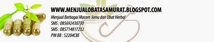 Menjual Obat Asam Urat, Kolesterol, Rematik obat tawon liar dan beragam obat herbal