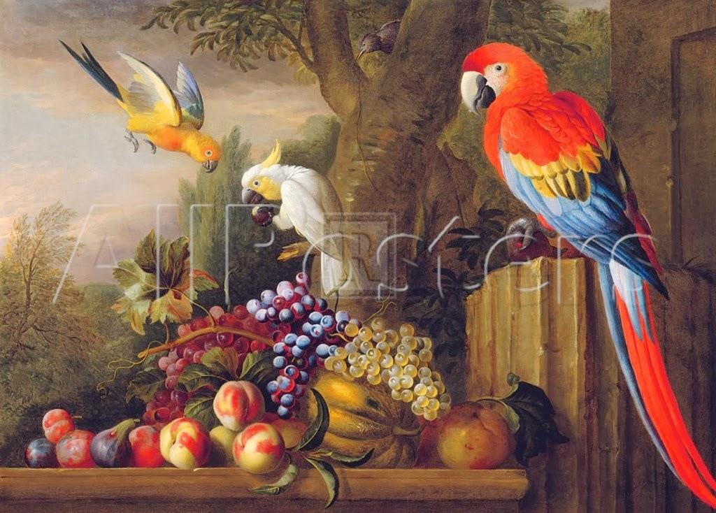 bodegones-exoticos-con-aves-y-frutas