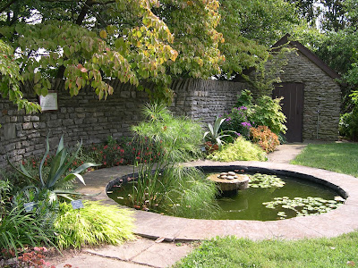 water pond with green plants in center and trees around and a stone walkway leading up to it