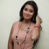 Bhanu Sri Hot Photos at Veedi Pourusham Movie Press Meet 20