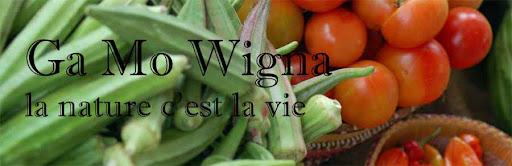 Ga Mo Wigna