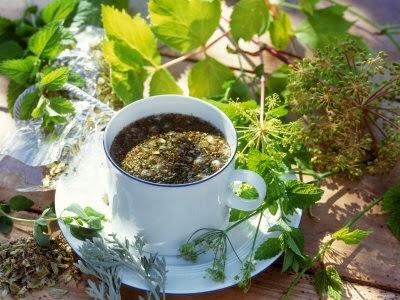 Herbal Tea Garden Design How To Do Gardening