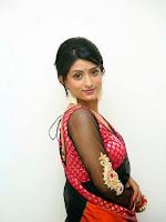 Nidhi Natuiyal Glamorous Photos in Saree-cover-photo