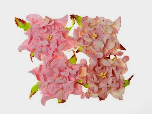 http://kolorowyjarmark.pl/pl/p/Kwiaty-Gardenia-7cm-PinkPinkWhite/296