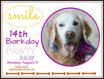 http://www.sugarthegoldenretriever.com/2015/07/this-moment-see-beautiful-sugars-14th-barkday-countdown/