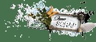 Наш челлендж-блог!!!