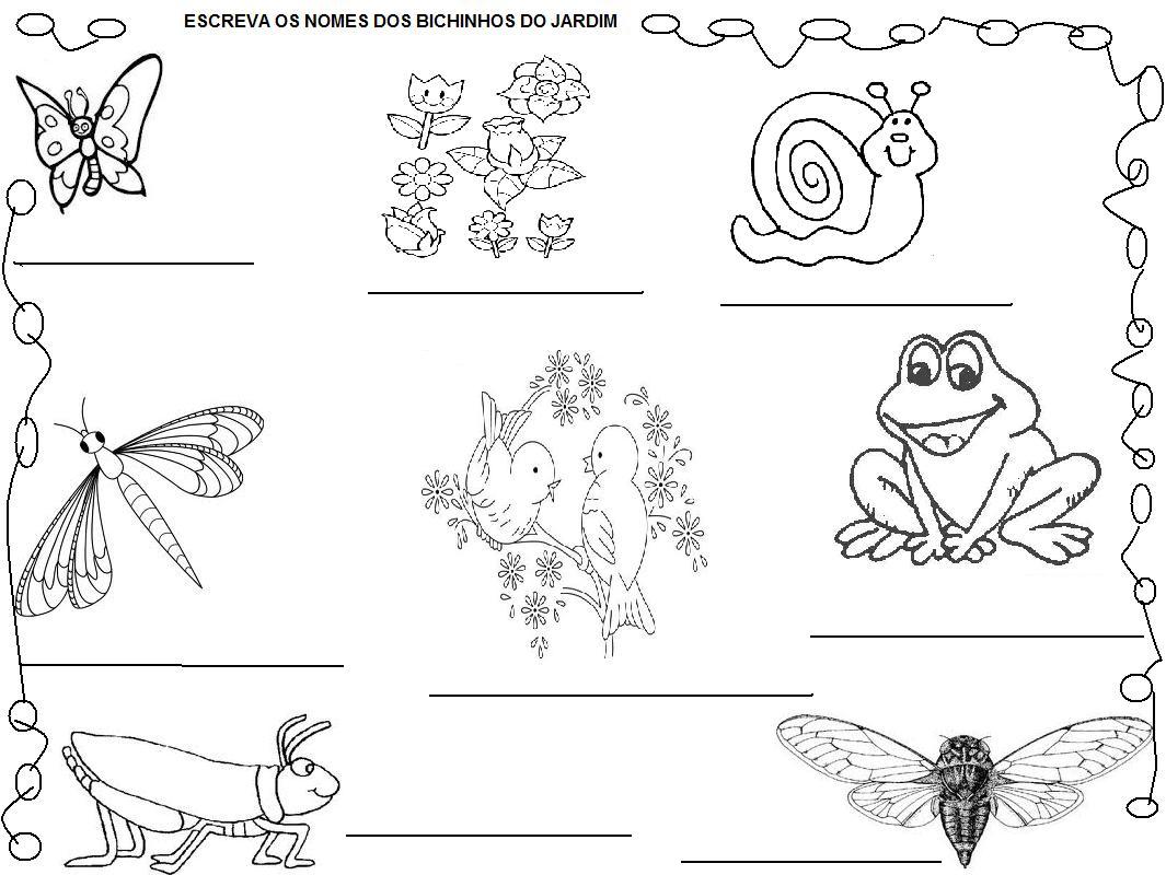 Educação Infantil Betim Leilão de Jardim  Texto para Leitura