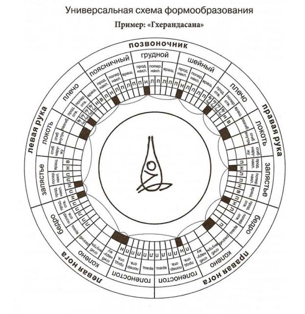 асана, Универсальная схема формообразования Асан, Йога для начинающих