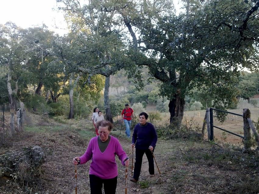 VIDA SALUDABLE - 6ª Ruta por los caminos de Santa Ana la Real NORDIC WALKING