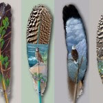 Beautiful feather painting pictures