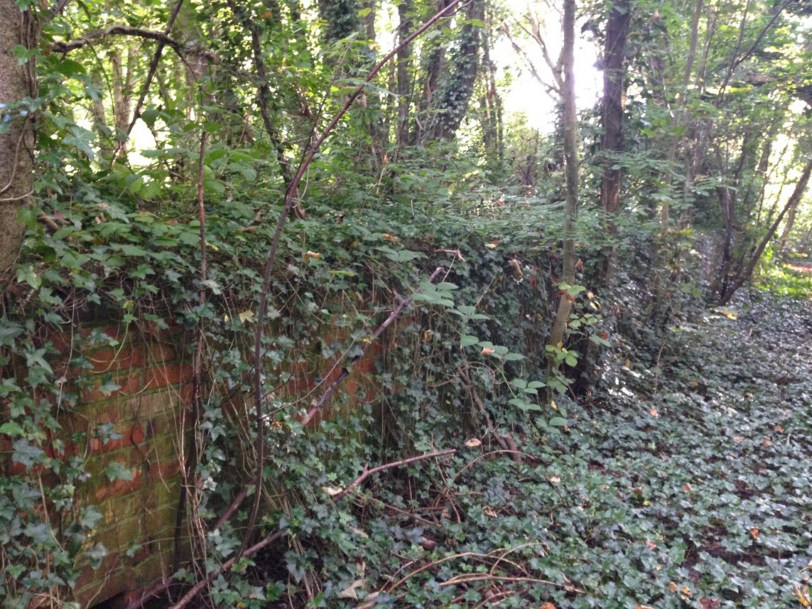 Remains of a platform, Meon Valley Railway, Hampshire