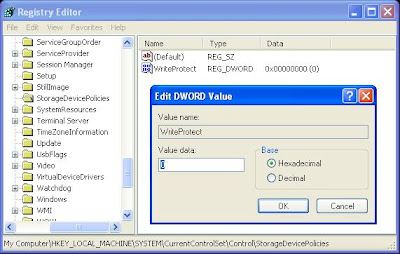 Double click the key WriteProtect in the right pane and set the ...