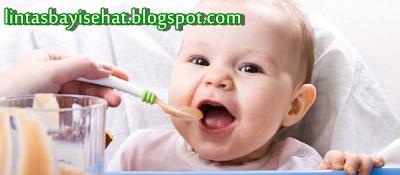 Menu Sehat untuk Bayi
