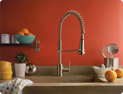 Danze D455158 Parma Single Handle Pre-Rinse Faucet