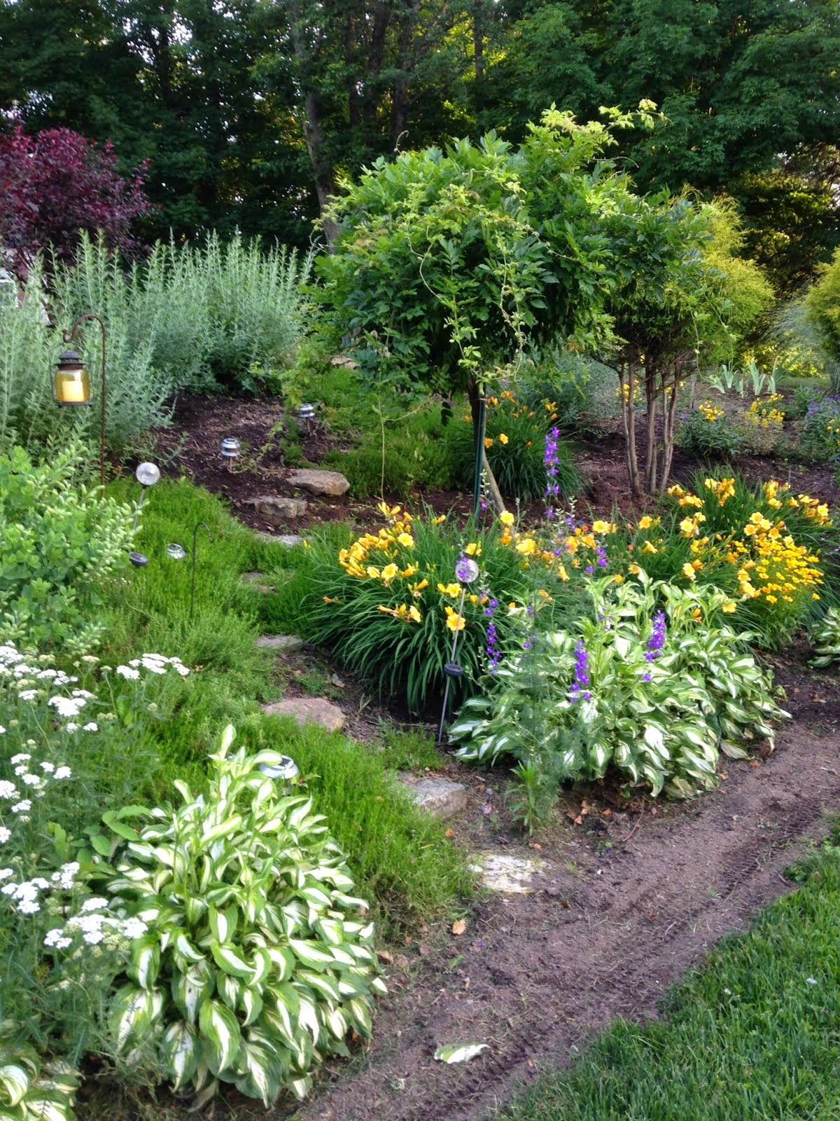 Wanda's Garden