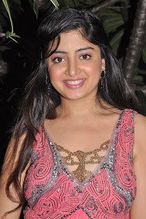 Poonam_Kaur_Photos_At_Guest_Movie_audio_function