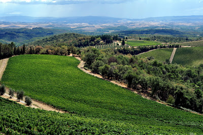View from the Castello di Brolio - Gaiole in Chianti, Italy - Photo by Taste As You Go