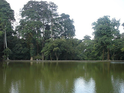 Kolam Kebun Raya Bogor