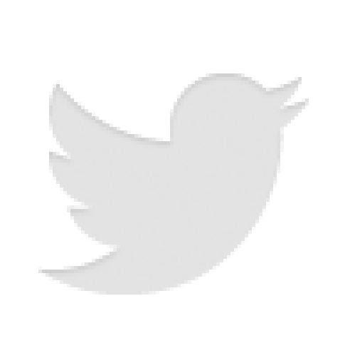 Der Twitter