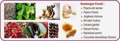 obat ejakulasi dini herbal legal terkenal rekomendasi boyke