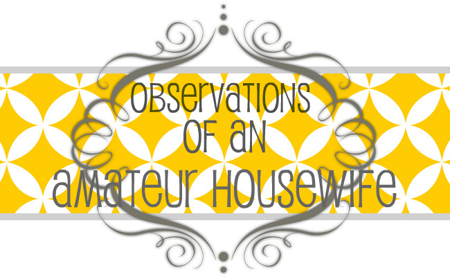 Observations of an Amateur Housewife