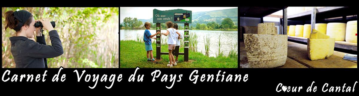 Carnet de voyage du Pays Gentiane