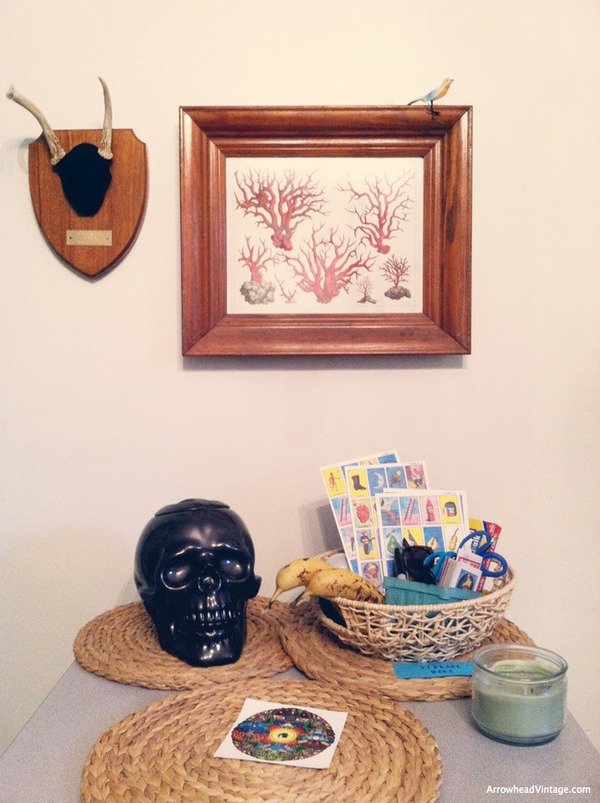 skull cookie jar lotteria coral antlers